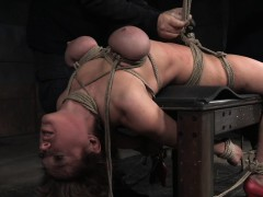 Busty shorthair nympho roped and punished