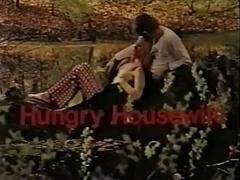 Dänisch, Deutsch, Hausfrau, Vintage