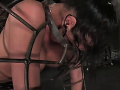 busty brunette's nailed by machines