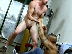 muscular stud gives head